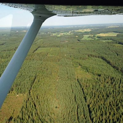 Kuvassa metsää lentokoneesta kuvattuna.