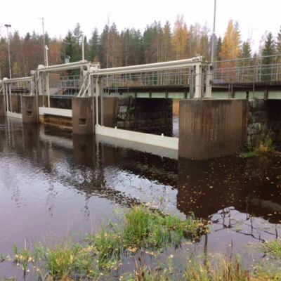 Virttoon padolla säädellään Kuortaneenjärven pintaa Lapuanjoessa. Joki virtaa järven läpi.