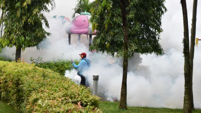 Insektgift sprutas ut i alla bostadsområden för att ta kål på myggorna vars bett orsakar den farliga denguefebern.