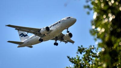 Finnairflyg mot blå himmel, i förgrunden björklöv.