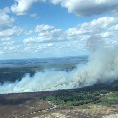 Ilmakuva Suursuon turvetuotantoalueen tulipalosta 10.6.2019
