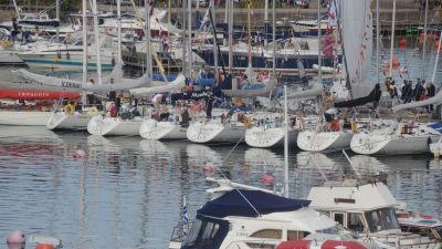 En rad segelbåtar ligger förtöjda vid en brygga.