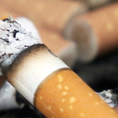 Tupakka tuhkakupissa