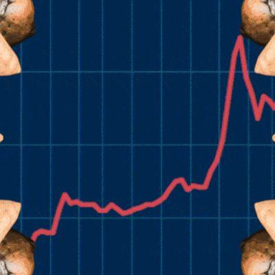 Pörssikurssikäyrä ja psilosybiinisieniä