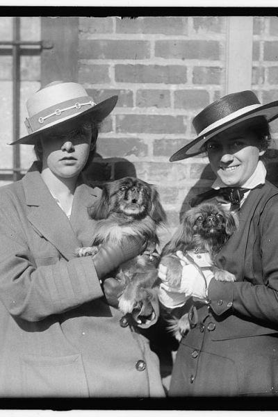 Kaksi naista joilla on syleissään koirat.