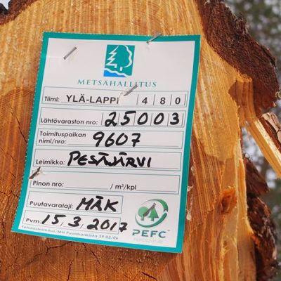 Metsähallituksen merkintälappu puunrungossa