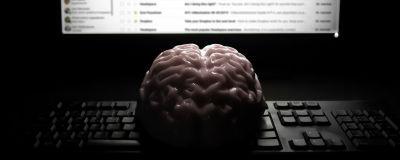 Aivot tietokoneruudun edessä