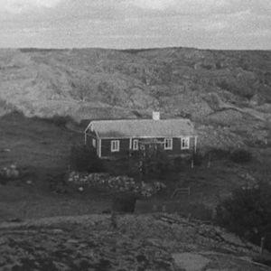 talo saaressa.