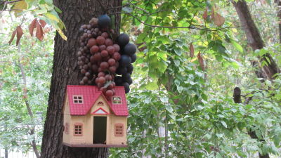 Ett miniatyrhus och vindruvor som hänger i ett träd
