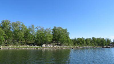Lampaita Björkön-saarella