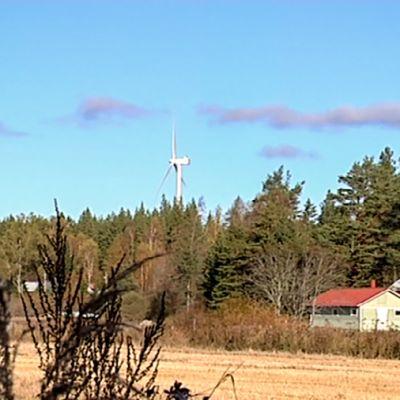 kaksi tuulimyllyä, pelto, talo