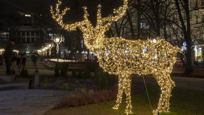 En ren gjord av ljusslingor i Esplanadparken i Helsingfors.