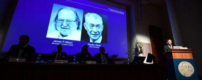 Thomas Perlmann avslöjar pristagarna av Nobelpriset i fysiologi eller medicin 2018, Tasuku Honjo och James P. Allison.