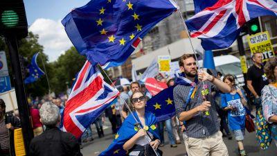 Demonstration emot brexit.