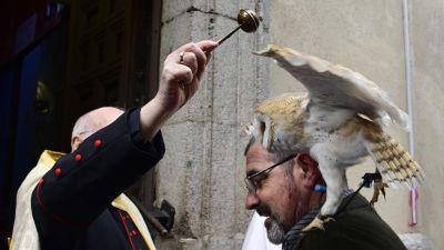 En uggla välsignas på minnesdagen för den helige Antonius (skyddshelgon för husdjur)