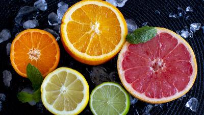 En bild på fem olika citrusfrukter skurna i halvor med insidan uppåt.