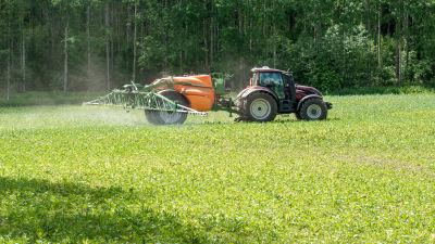 Traktori ruiskuttaa torjunta-aineita Etelä-Hämäläisellä pellolla