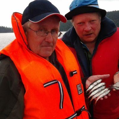 Kalastusbiologi Lasse Hyytinen ja Yle Etelä-Savon tuottaja Petri Vironen ja yhdeksän muikkua.