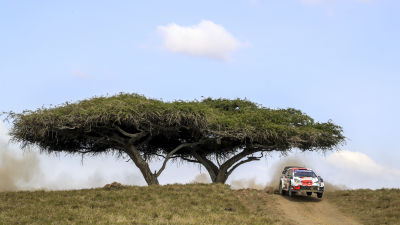 Sebastien Ogier i farten i Kenya.