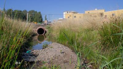 Ett stort cementrör var vattnet rinner ut i ett dike, i bakgrunden syns ett gult daghem som byggs.