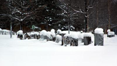 Kyrkogård under snötäcke.