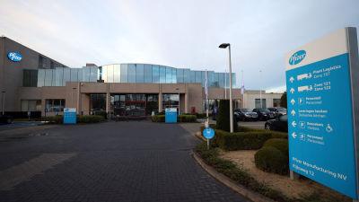 Pfizers anläggning i belgiska Puurs.