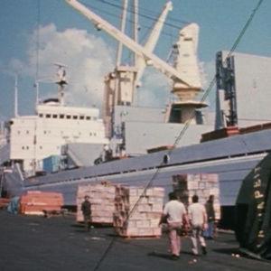 Rahtilaiva Pallas satamassa. Edustalla ihmisiä ja puulaatikoita.