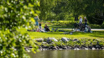 En park med människor.