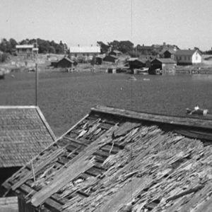 Haapasaari vuonna 1964