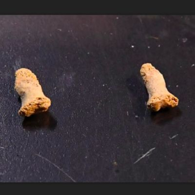 Kaksi pientä luunpalaa, joissa on reikiä.