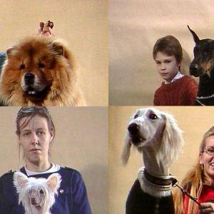 Collage av hundar och människor, Yle 1995