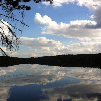 Järvimaisema ja sininen taivas
