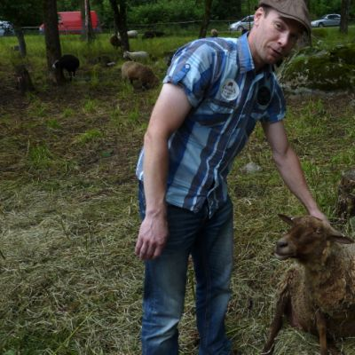 Pekkolan tilan isäntä Jani Pekkola rapsuttaa suomenlammasta. Vanhimmat lampaat ovat siitä mielissään.