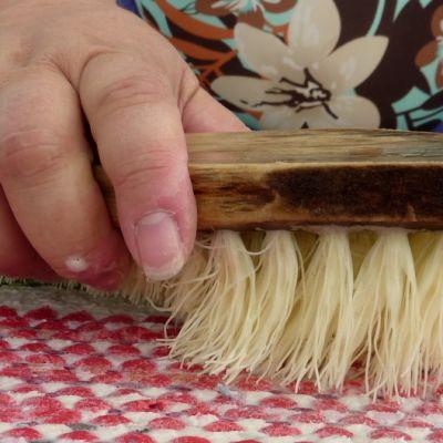 Vanha juuriharja on Tuijan paras pesukaveri.