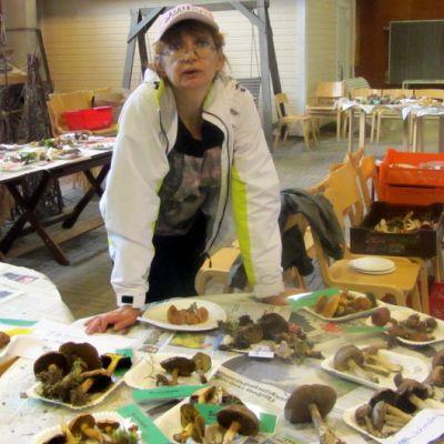 Kristina Koskinen, otavan opisto, sieninäyttely