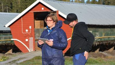 Veterinär Johanna Korpela och pälsfarmare Tobias Andersson studerar en surfplatta.