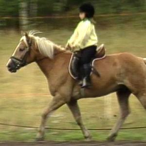 Flicka rider, Yle