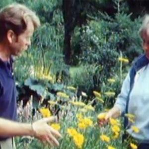 Arno Kasvi och Aagot Jung i Runsala, 1989