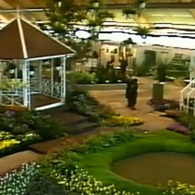 trädgårdsmässa, 1984
