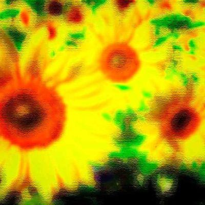 auringonkukkia, psykedeelinen versio