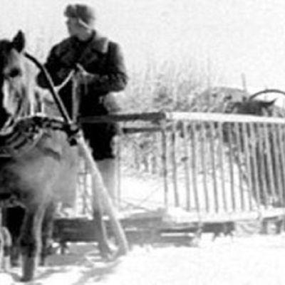 Svartvit bild av en häst som drar en släde