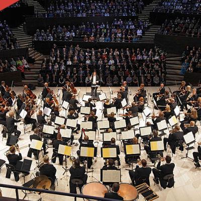 Helsingin kaupunginorkesteri