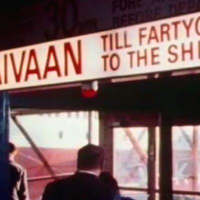 Träff lär tittarna svenska på Viking Line