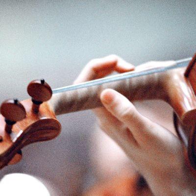 Viulisti soittaa viulua.