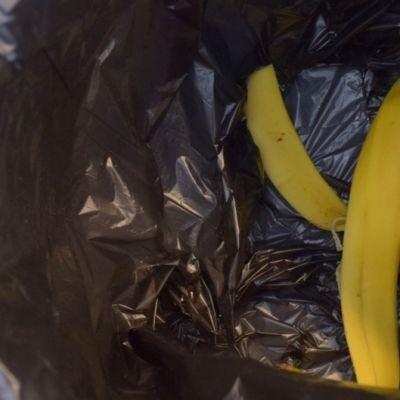 Banaaninkuori roskiksessa
