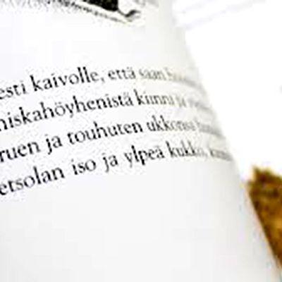 Kuva satukirjasta.