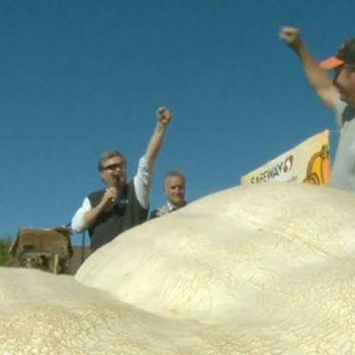 Kalifornialaisen Half Moon Bayn kurpitsafestivaalin voittanut kurpitsa kasvattajansa kanssa lavalla.