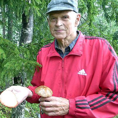 Tuomo Kajosmäki sienimetsässä