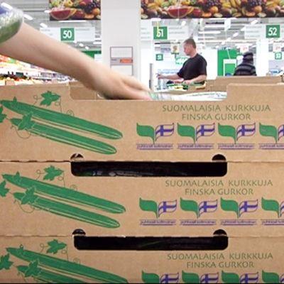 Suomalaisia kurkkulaatikoita kaupan vihannesosastolla.
