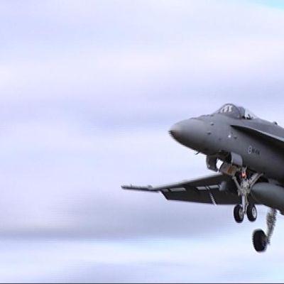 Hornet taivaalla. Hornetit lentävät Hallin ilmatilassa tiuhaan tämän viikon ajan.